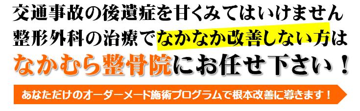 nakanakakaizensinaikata1